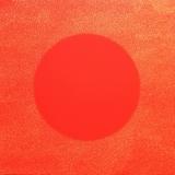 Atopique (24) - 2009 - 180x180 cm