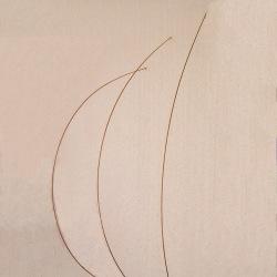 Pied d'Ange (3) - 2004 - 90x20x35 cm