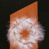 Pied d'ange (1) - 2004 - 55x19 cm