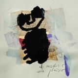 26-Le-Secret-des-Oiseaux-1996-65x50cm-sur-papier