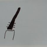 Germes - 1986 - 30x40cm  sur papier