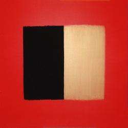 Champ Libre (21) - 2007 - 100x100 cm